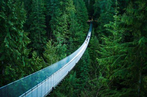 Экстремальный подвесной мост Капилано