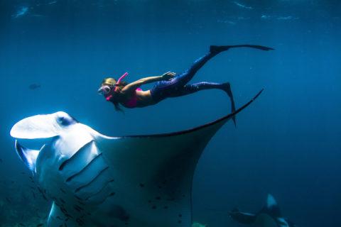 Мечта рыболова — гигантский скат 120 кг