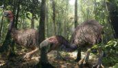 Ужасная птица Титанис